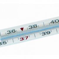 Mescomp TERMOMETR MESMED MM-108 Termometr