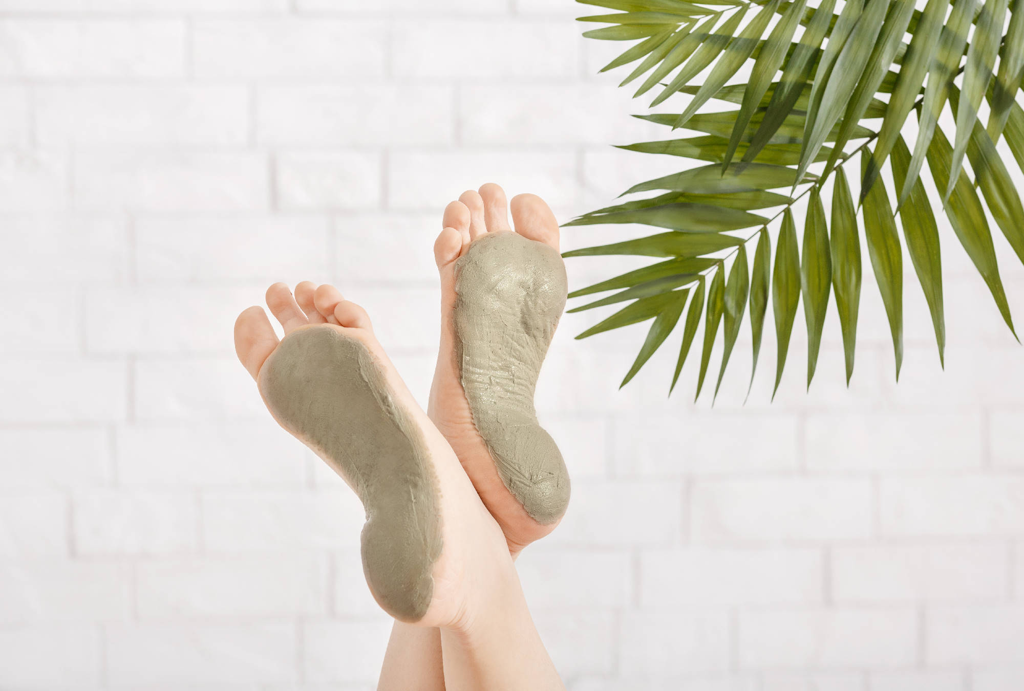 Beauty care in spa. Foot care with clay on white brick wall, with palm leaves, close up, free space